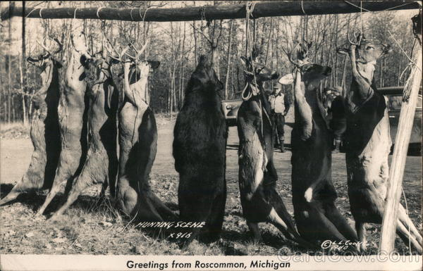 Hunting Scene Roscommon Michigan