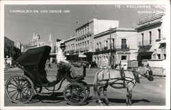 Carriages in Use Since 1900 Postcard