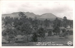 """Bill William's Mt."" from U.S. 66 Postcard"