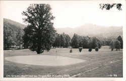 6th Green - Country Club