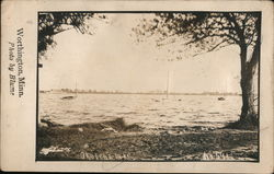 Okapella Lake Postcard