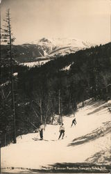 Along the Tram Alpine Trail, Cannon Mountain Postcard
