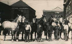 Men With Their Horses Postcard
