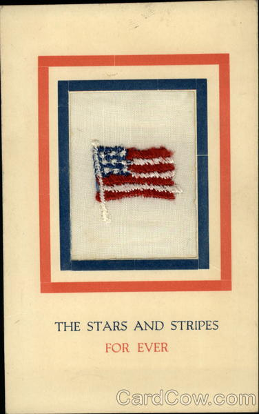Stars and Stripes For Ever Embroidered Silk