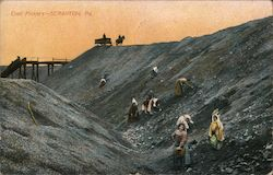 Coal Pickers