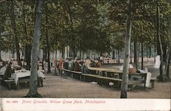 Picnic Grounds, Willow Grove Park Postcard