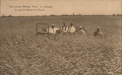 The Great Wheat Way in Kansas