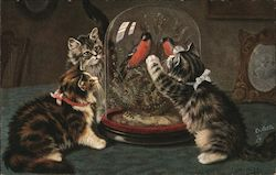 Cats eyeing two birds in a glass cage