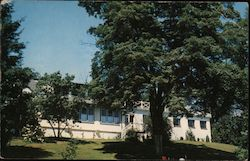 Pine Tree Inn Postcard