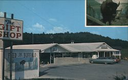 "The Gift Shop - Home of ""Billy, the Talking Buffalo"" Postcard"