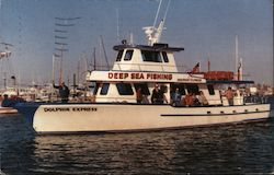 Dolphin Express Charter Boat