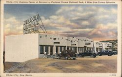 White's City Business Center at Entrance to Carlsbad Caverns National Park Postcard