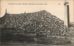 Pulpwood Pile, Great Northern Paper Mill Postcard