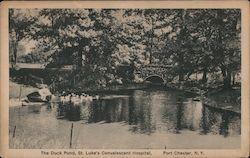 The Duck Pond, St. Luke's Convalescent Hospital