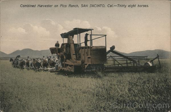 Combined Harvester on Pico Ranch, Thirty Eight Horses San Jacinto California