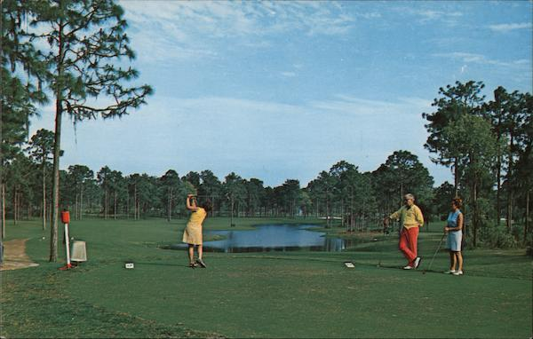 Innisbrook, 7th Tee - Copperhead Course Tarpon Springs Florida