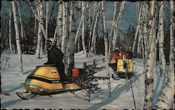 Snowmobiling Through the Birches in Maine
