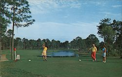 Innisbrook, 7th Tee - Copperhead Course Postcard