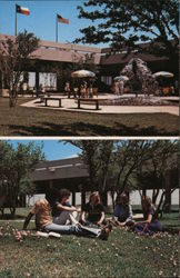 The University of Texas of the Permian Basin Postcard