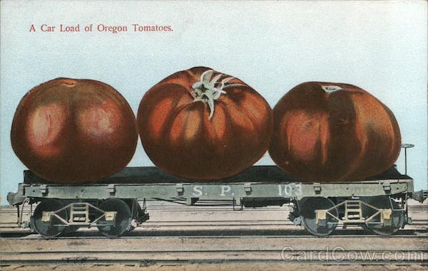 A Car Load of Oregon Tomatoes Exaggeration