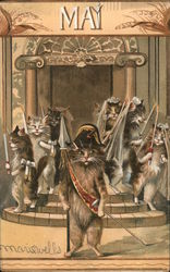 May: Cat Brides and Grooms