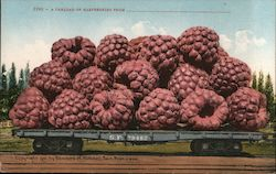 A Carload of Raspberries From______________