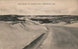 "Road Through The ""Province Lands"" Postcard"