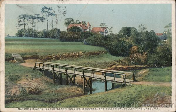 Natural Hazard, Seventeenth Hole No. 2 Course, The Belleview Belleair Florida