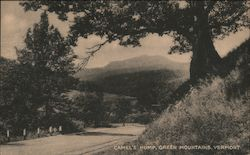 Camel's Hump, Green Mountains Postcard