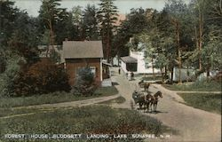 Forest House, Blodgett Landing, Lake Sunapee