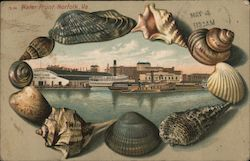 Water Front Shell Border Postcard