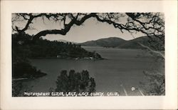 Picturesque Clear Lake Postcard