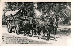 Covered Wagon Rides, Knots Berry Farm