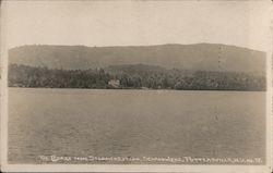The Cedars From Steamer Eyelyn, Schroon Lake