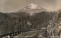 Mt. Hood From Laurel Hill-Loop Road