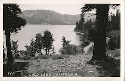 Scenic View, Gold Lake