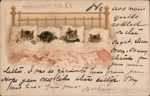 Narragansett Pier - Cats in Bed Rhode Island