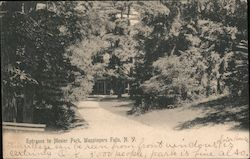 Entrance to Mesier Park Postcard