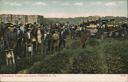 Strawberry Pickers and Crates