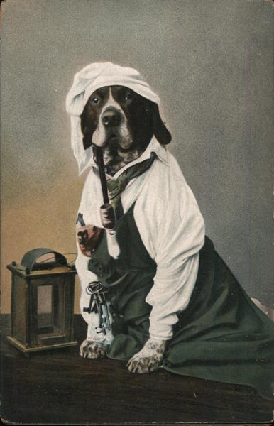A Dog Wearing a Dress and Smoking a Pipe Dogs