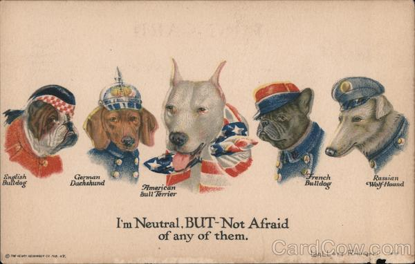 I'm Neutral, BUT Not Afraid of Any of Them - Five Breeds of Dogs