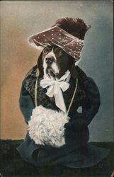 Dog Dressed in Clothes