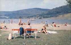 Bathing Beach, Alleghany State Park Postcard
