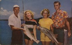 A Great Catch of Fish in Florida Waters