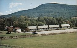 Scenic View from The Vermonter Motel, Route 9 West Postcard