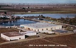 Home of the Guild Wine Company Postcard