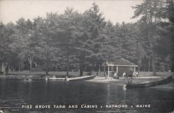 Pine Grove Farm and Cabins