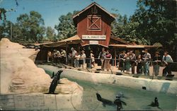 The Seal Pool and Old Mac Donald's Farm, Knott's Berry Farm