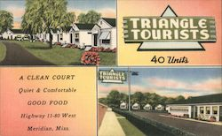 Triangle Tourists Postcard
