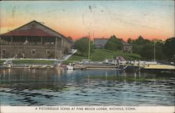 A Picturesque Scene at Pine Brook Lodge